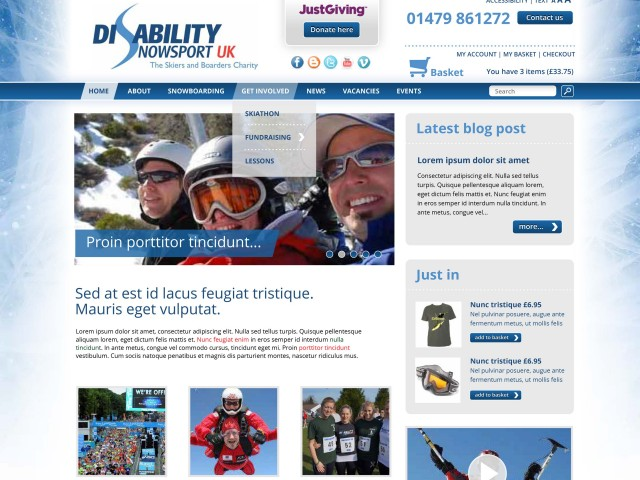 Snow Sports web design