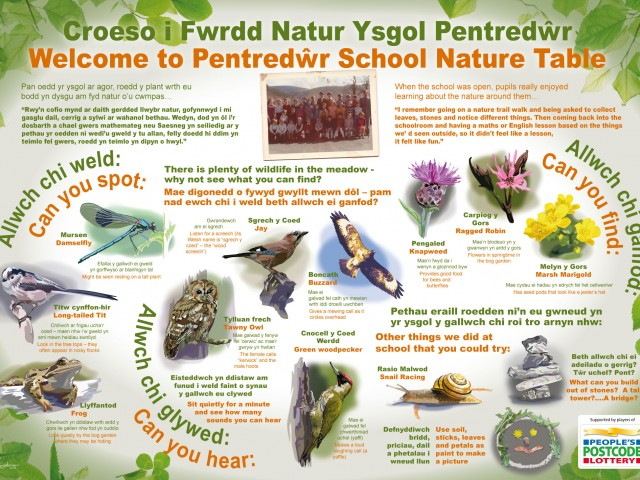 Pentredwr Nature Table