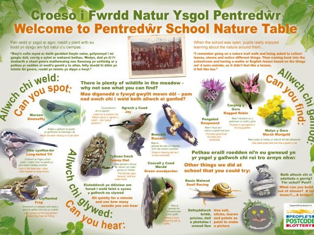 Pentredwr Nature Table