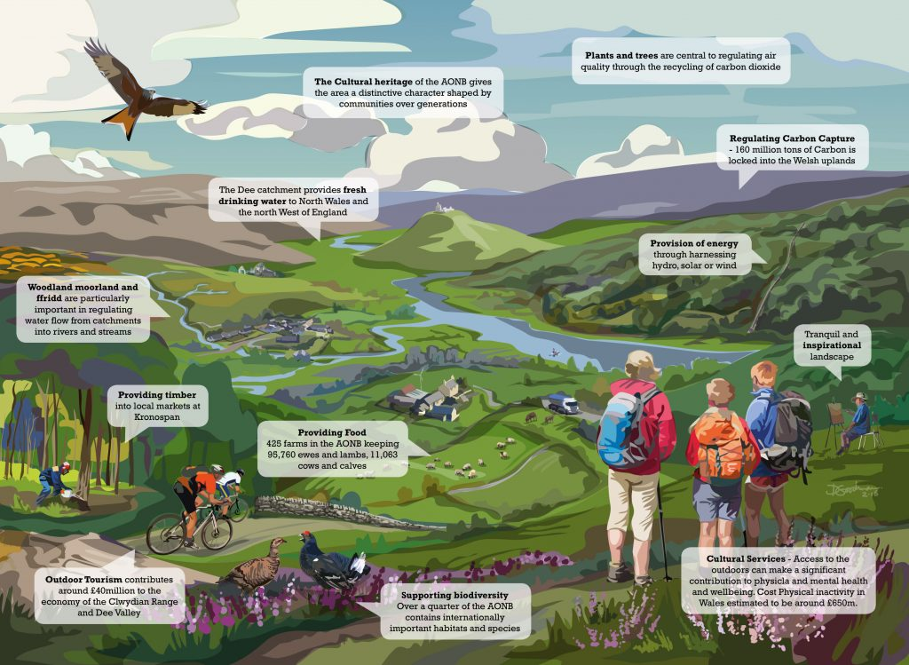 Landscape-illustration-15-with-text